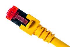 Ethernetkontaktdon Fotografering för Bildbyråer