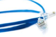 Ethernetlinje Royaltyfri Foto