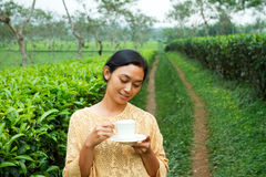 Ethic young woman relaxing at tea plantation. Asian ethic young woman drink a cup of healthy tea at tea plantation in the morning stock photo
