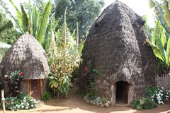 Ethiopia, africa. A typical dorze house in ethiopia Stock Images