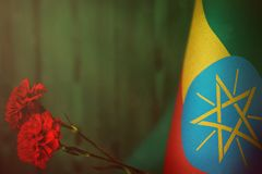 Ethiopia flag for honour of veterans day or memorial day with two red carnation flowers. Glory to the Ethiopia heroes of war. Ethiopia flag with two red royalty free stock photography