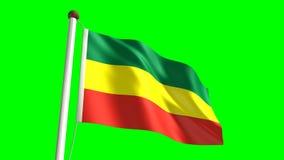 Ethiopia flag Royalty Free Stock Photos