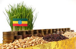Ethiopia flag waving with stack of money coins and piles of wheat Royalty Free Stock Photo
