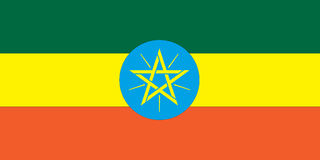 ethiopia flagganational vektor illustrationer