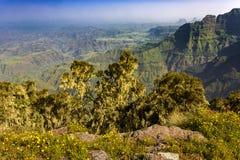 ethiopia góry simien Zdjęcie Royalty Free
