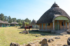 Ethiopia. Kosoye, a resort in the area of the Semien mountains Royalty Free Stock Photos