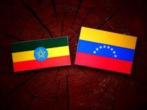 ethiopian Fotografering för Bildbyråer