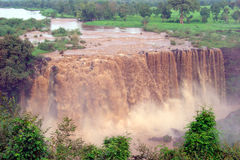 Ethiopian falls Royalty Free Stock Photo