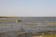 Ethiopian fishermen at the Langano Lake Ethiopia Royalty Free Stock Images