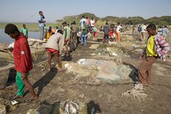 African fishermen Royalty Free Stock Photos