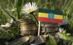 Ethiopian flag with stack of money coins with grass. And flowers royalty free stock photography