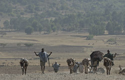 ethiopian folkväg Arkivfoto
