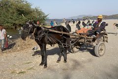 Ethiopian horse carriage Royalty Free Stock Images