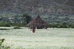 Ethiopian house Stock Photo