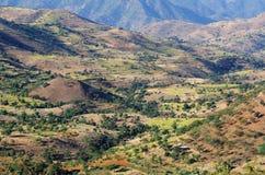 ethiopian liggande arkivfoto
