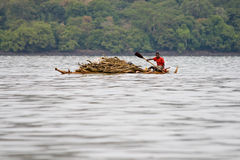 Ethiopian native transports logs on Lake Tana. Stock Photos