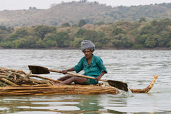 Ethiopian native transports logs on Lake Tana. Stock Images