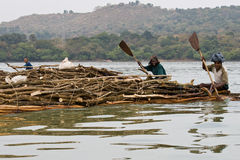 Ethiopian natives transport logs on Lake Tana. Stock Photo