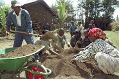 Ethiopian people work in reforestation project. Ethiopie, regio Oromia, dorp Holeta: reforestation project, women putting fertile nursery earth in plastic bags Stock Photo
