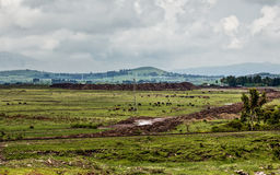Ethiopian rural landscape Royalty Free Stock Images