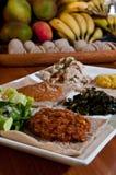 Ethiopian sampler plate Royalty Free Stock Photography