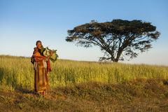 Ethiopian woman and acacia tree Stock Photography