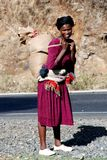 Ethiopian woman carrying load. Ethiopian woman carrying a load on her back in Dejen, North of the Blue Nile Gorge. Ethiopian women tend to carry loads on their Stock Images