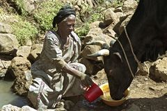 Ethiopian woman fetch water from natural well Stock Images