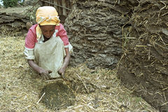 Ethiopian woman makes from cow dung fuel disks Stock Image