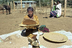 Ethiopian woman is to separate chaff from the grain Royalty Free Stock Photo