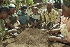 Ethiopian women work in reforestation project. Ethiopia, Oromia, village CHANCHO Gaba Robi: reforestation project. Young and old women working together, they put Royalty Free Stock Image