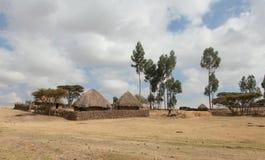 The Ethiopian yard Royalty Free Stock Photo