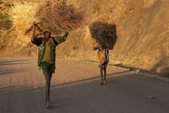 Ethiopians with hay bundles Royalty Free Stock Photo