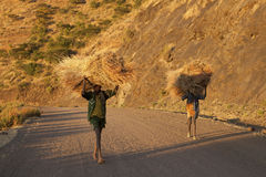 Ethiopians with hay bundles Royalty Free Stock Photography