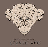 Ethnic black head of ape. totem/tattoo design. Use for print, posters, t-shirts. Vector illustration Royalty Free Stock Photo