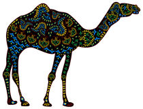 Ethnic camel Royalty Free Stock Photos