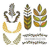 Ethnic collection with stylized colorful leaves. Template for decoration, greeting and invitation cards, covers. Wrapping, package design Stock Photos