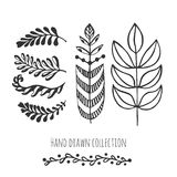 Ethnic collection with stylized doodle leaves. Template for decoration, greeting and invitation cards, package design Royalty Free Stock Photos