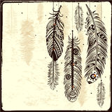 Ethnic Dream catcher Royalty Free Stock Images
