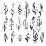 Ethnic feather vector set. Hand drawn collection Stock Photo
