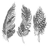 Ethnic feathers. Tribal Feathers Vintage Pattern. Hand Drawn Doodles illustration.  Stock Images