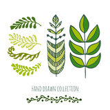 Ethnic green doodle leaves for spring or summer decoration, greeting and invitation cards Stock Photography