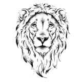 Ethnic hand drawing head of lion. totem / tattoo design. Use for print, posters, t-shirts. Vector illustration
