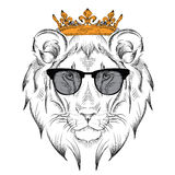 Ethnic hand drawing head of lion wearing crown and in the glasses. Royalty Free Stock Photo