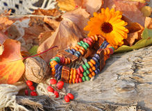 Ethnic handmade bone bracelet with calendula Stock Image