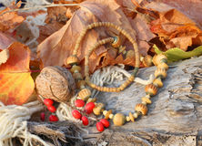 Ethnic handmade bone necklace Stock Image