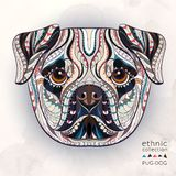 Ethnic patterned head of pug-dog stock illustration