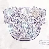 Ethnic patterned head of pug-dog Royalty Free Stock Photography