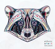 Ethnic patterned head of raccoon royalty free illustration