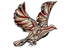 Ethnic pigeon Royalty Free Stock Photos